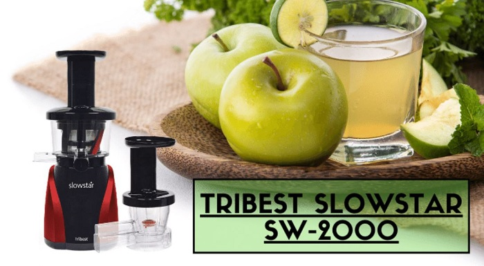 Best Choice Products 150 watt horizontal slow masticating juicer
